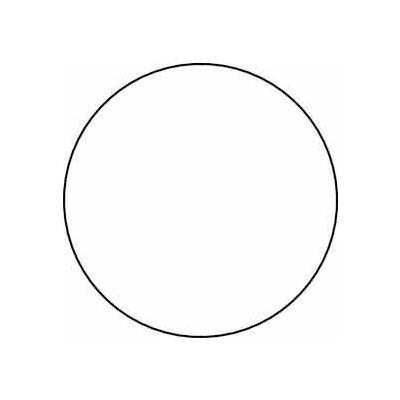 """White 4"""" Dia. Discs"""