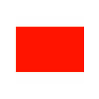 "2-3/4"" x 4"" Fluorescent Red Rectangle"