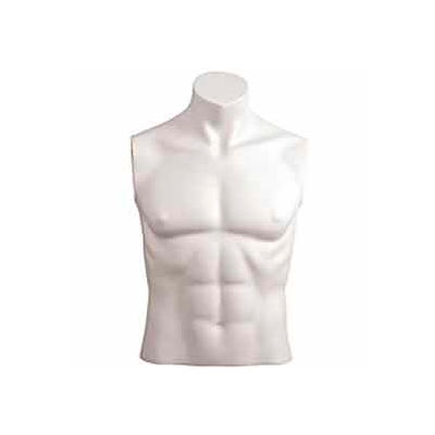 Male Bust w/out Head - Size 40 - White