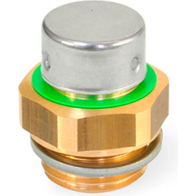 """Brass Breather Valve with G 3/4"""" Pipe Thread - J.W. Winco 881-G3/4-200-MS-M"""