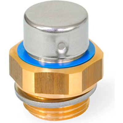 """Brass Breather Filter with G 1/2"""" Pipe Thread - J.W. Winco 882-G1/2-MS-M"""