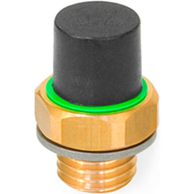 "Brass Breather Valve with Plastic Cap - G 3/4"" Pipe Thread - J.W. Winco 883-G3/4-20-B-MS"