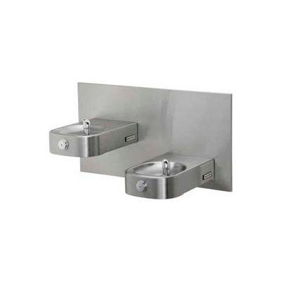 Halsey Taylor Contour™ Bi-Level Barrier-Free Fountain, HDF-BLEBP FTN