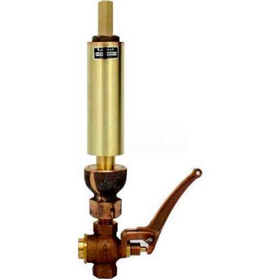 """Kahlenberg 117V Air/Steam Whistle, 2"""" Dia. w/ Valve"""