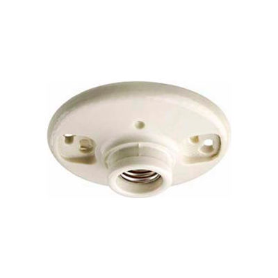 Leviton 49875 Medium Base 1-Piece Glazed Porcelain Outlet Bx Mount Incand. Lampholder