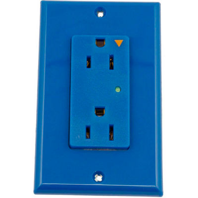 Leviton 5280-Igb 15a 125v Decora Duplex Receptacle, Iso Ground, Blue - Min Qty 4