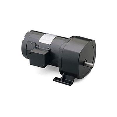 Leeson 108700.00, 1/4 HP, 8 RPM, 90VDC, TENV, P1100, 212:1 Ratio, 1087 In-Lbs