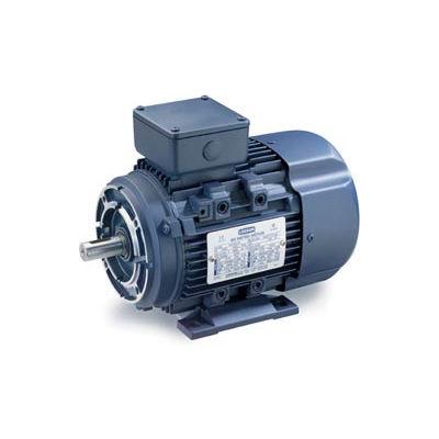 Leeson Motors Motor IEC Metric Motor-5.5HP, 230/460V, 1180/975RPM, IP55, B3/B14, 1.15 SF, 87.5 Eff.