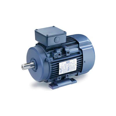 Leeson Motors Motor IEC Metric Motor-7.5HP, 230/460V, 1175/975RPM, IP55, B3, 1.15 SF, 89.5 Eff.