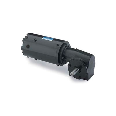 Leeson M1145038.00, 1/6 HP, 43 RPM, 115/230V, 1-Phase, TEFC, 13, 40:1 Ratio, 113 In-Lbs