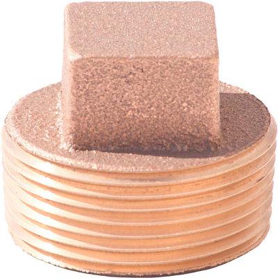 1 In. Lead Free Brass Plug - MNPT - 125 PSI - Import