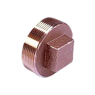 """Brass 125 Lb Lead Free Fitting 1-1/4"""" Square Head Solid Plug Npt Female - Pkg Qty 25"""