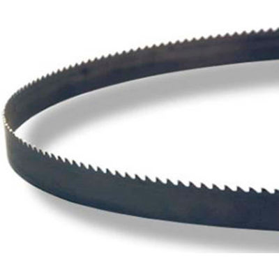 "M.K. Morse 8261231540BX1 - 12' 10""x 1-1/4"" x 0.042 M-Factor Carbide Tipped 2/3  Band Saw Blade"