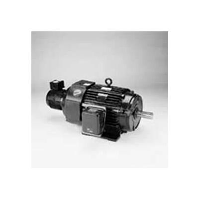 Marathon Motors Inverter Duty Motor, Y518, 444THFN8046, 125HP, 460V, 1800RPM, 3PH, 444T, TEBC