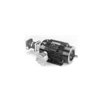 Marathon Motors Inverter Duty Motor, Y981, 213THES8053, 5HP, 230/460V, 1800RPM, 3PH, 213TC, EPNV