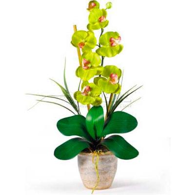 Nearly Natural Phalaenopsis Silk Orchid Flower Arrangement, Green