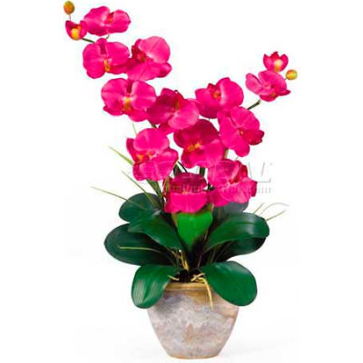 Nearly Natural Double Phalaenopsis Silk Orchid Flower Arrangement, Beauty