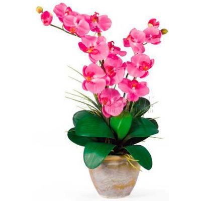 Nearly Natural Double Phalaenopsis Silk Orchid Flower Arrangement, Dark Pink