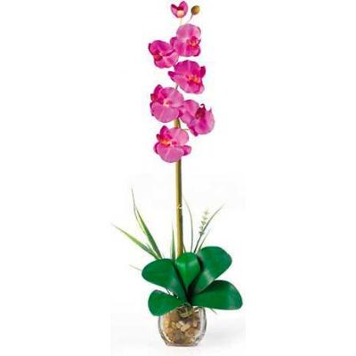 Nearly Natural Single Phalaenopsis Liquid Illusion Silk Flower Arrangement, Orchid
