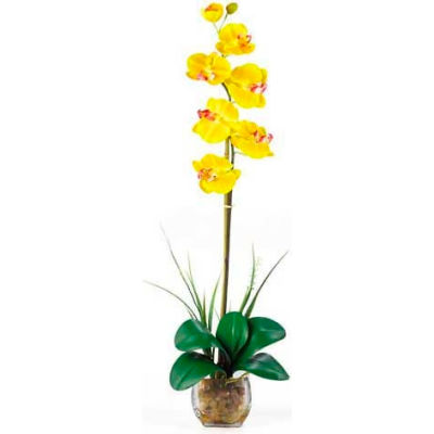 Nearly Natural Single Phalaenopsis Liquid Illusion Silk Flower Arrangement, Yellow