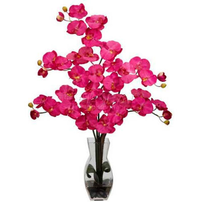 Nearly Natural Phalaenopsis with Vase Silk Flower Arrangement, Beauty