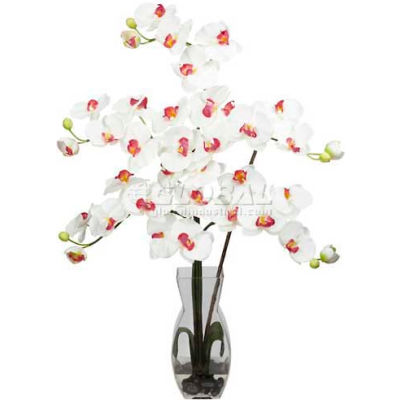Nearly Natural Phalaenopsis with Vase Silk Flower Arrangement, White