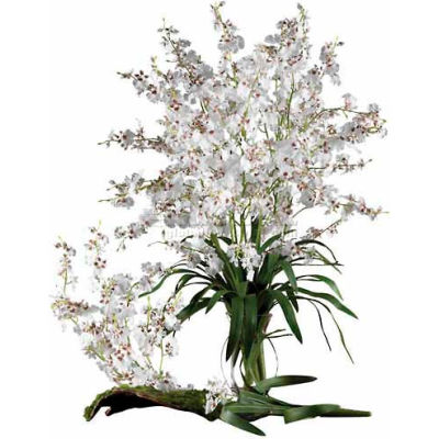 Nearly Natural Dancing Lady Silk Orchid Flowers (Set of 12), White