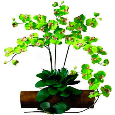 Nearly Natural Phalaenopsis Stem (Set of 12), Green