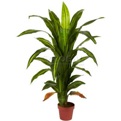 Nearly Natural 4' Dracaena Silk Plant
