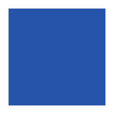 Flagging Tape - Blue