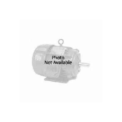 US Motors OEM Replacement, 1/5 HP, 1-Phase, 970 RPM Motor, 1680