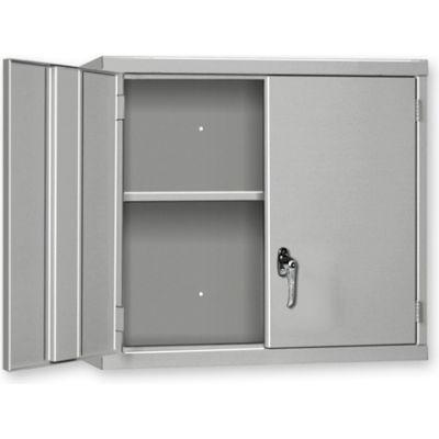 "Pucel Wall Cabinet WC-4827  - 48""W x 14""D x 27""H, Blue"