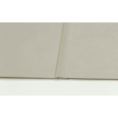 "Pawling® WP-40-4x8-1-Case Rigid PETG Wall Covering, 8' x 1/25"" x 4'"
