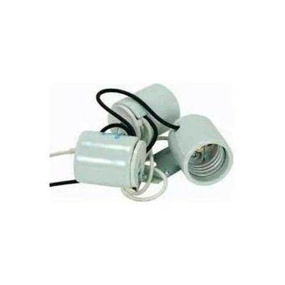 Satco 80-1082 Three Light Porcelain Socket w/ 1/8 IP Metal Strap
