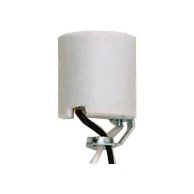 Satco 80-2182 Keyless Unglazed Porcelain Socket w/Hickey and 20-in. Leads