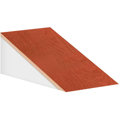 "Salsbury Sloping Hood 33352 - for 21""D Designer Wood Locker 12""W Cherry"