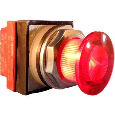 Springer Controls N7ELSRR02-240, 30mm Illuminated Mushroom-Head, Momentary, 240V, 2 N.C. - Red