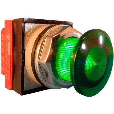 Springer Controls N7ELSVT20-240, 30mm Illuminated Mushroom-Head, Momentary, 240V, 2 N.O. - Green