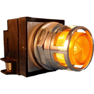 Springer Controls N7PLMGT02-240,30mm Illum. Push-Button,Guarded,Momentary,240V, 1 N.O.+1 N.C.,Yellow