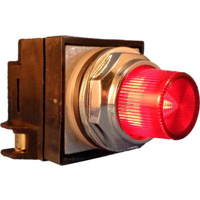 Springer Controls N7PLSRT02-240,30mm Illum. Push-Button,Extended,Momentary,240V, 1 N.O.+1 N.C.,Red