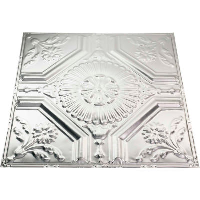 Great Lakes Tin Rochester 2' X 2' Nail-up Tin Ceiling Tile in Clear - T58-04