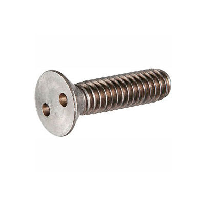 "1/4-20 x 2-1/2"" Security Machine Screw - Flat Spanner Head - 18-8 Stainless Steel - FT - 100 Pk"