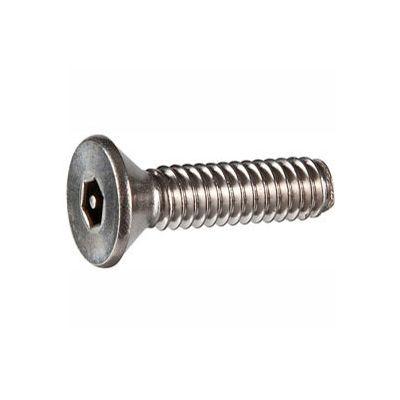 "10-24 x 1"" Security Machine Screw - Flat Hex Socket Head - 302HQ/18-8 Stainless Steel - FT - 100 Pk"