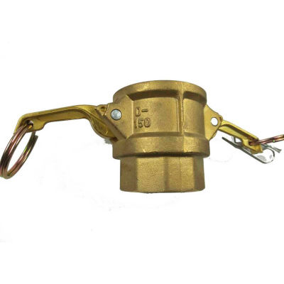 "1/2"" Brass Type D Coupler with Threaded NPT Female End"