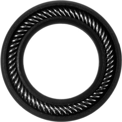 "Graphite Filled PTFE Spring Energized Rod Seal for .25"" Rod or .375"" Piston Bore"