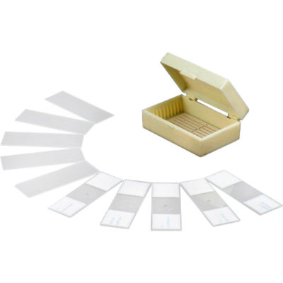 AmScope PB10 10 pc. Prepared & Blank Microscope Glass Slides