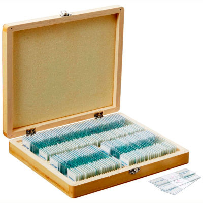 AmScope PS100E 100 pc. Homeschool Biology Prepared Microscope Slides with Wooden Case