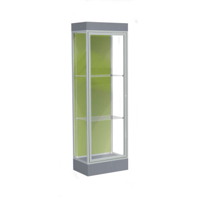"Edge Lighted Floor Case, Pale Green Back, Satin Frame, 6"" Carbon Mesh Base, 24""W x 76""H x 20""D"