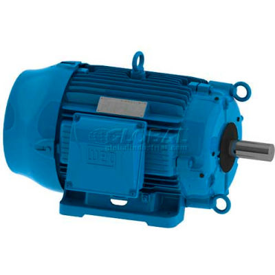 WEG Cooling Tower Motor, 00318AT3PCT182T-W22, 3 HP, 1800 RPM, 200 Volts, 3 Phase, TEAO