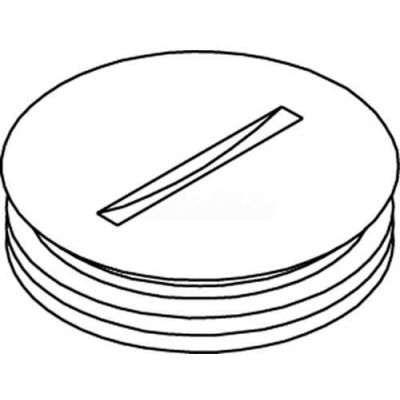 "Wiremold 825a-1 Floor Box 800 Series Abandon Plug, Brass, 1"" - Pkg Qty 10"